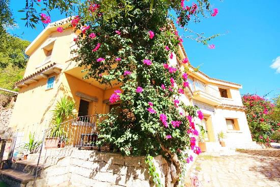 Real Estate Agency buy an apartment in Olbia